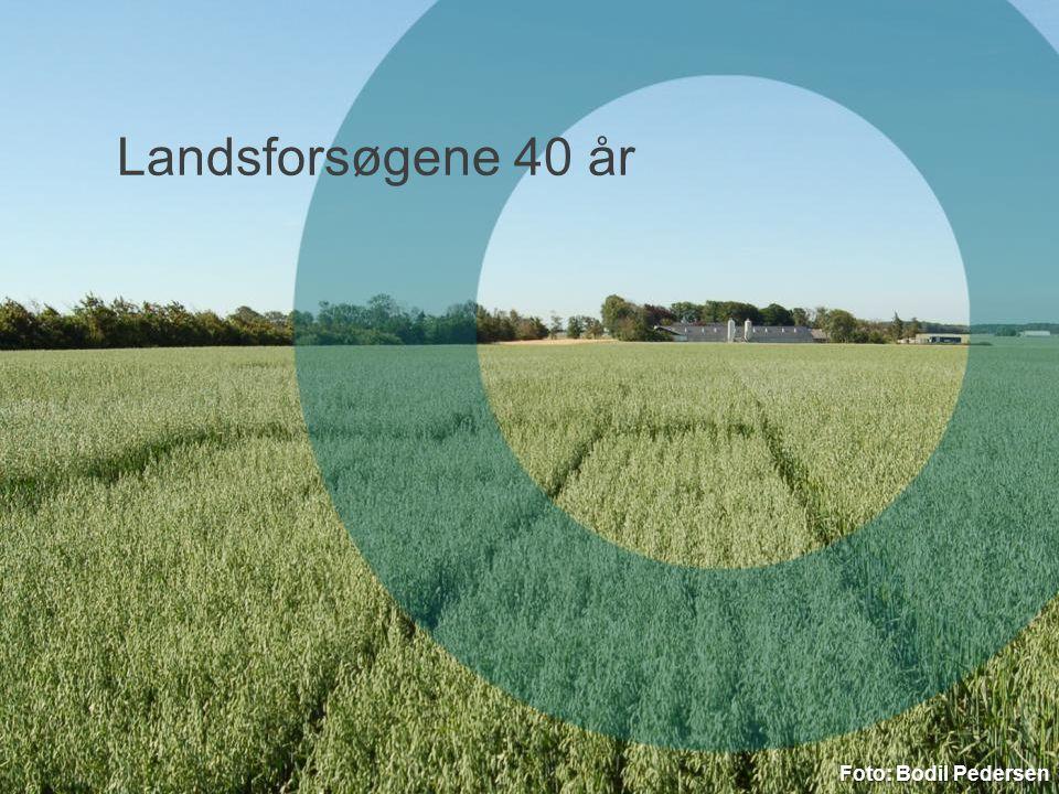 3. april 2017 Landsforsøgene 40 år Foto: Bodil Pedersen