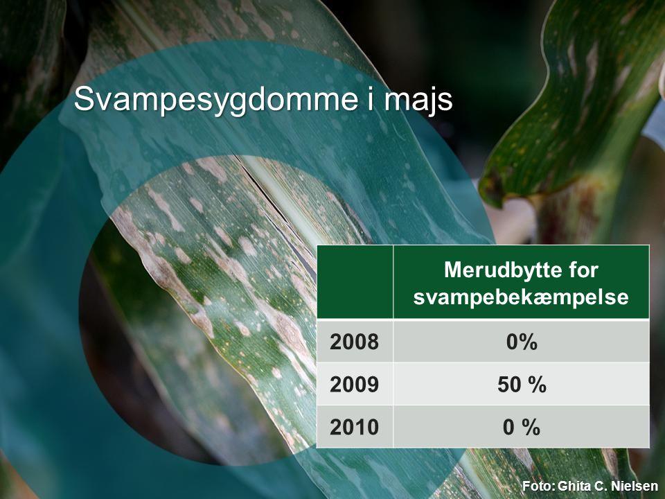 Merudbytte for svampebekæmpelse