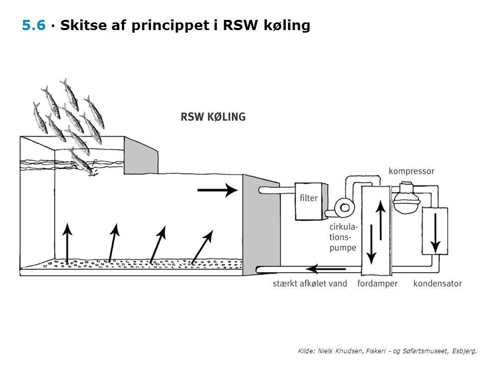 5.6 · Skitse af princippet i RSW køling