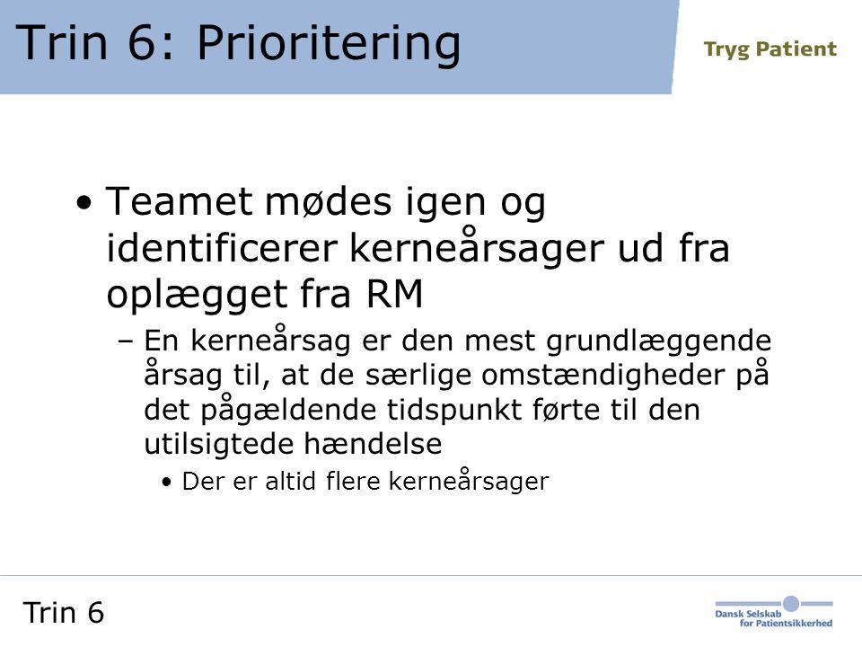 Trin 6: Prioritering Teamet mødes igen og identificerer kerneårsager ud fra oplægget fra RM.