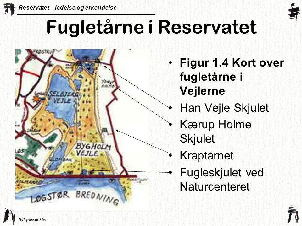 Fugletårne i Reservatet