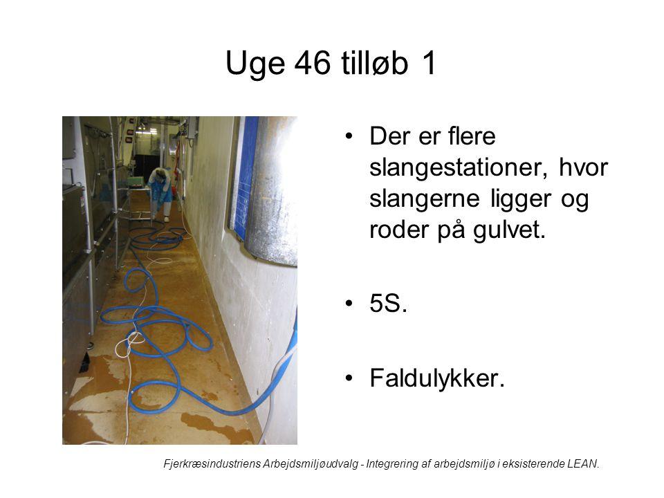 Uge 46 tilløb 1 Der er flere slangestationer, hvor slangerne ligger og roder på gulvet. 5S. Faldulykker.