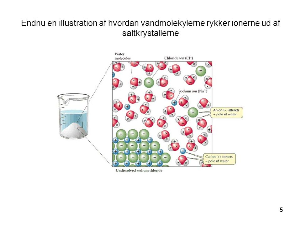 Endnu en illustration af hvordan vandmolekylerne rykker ionerne ud af saltkrystallerne