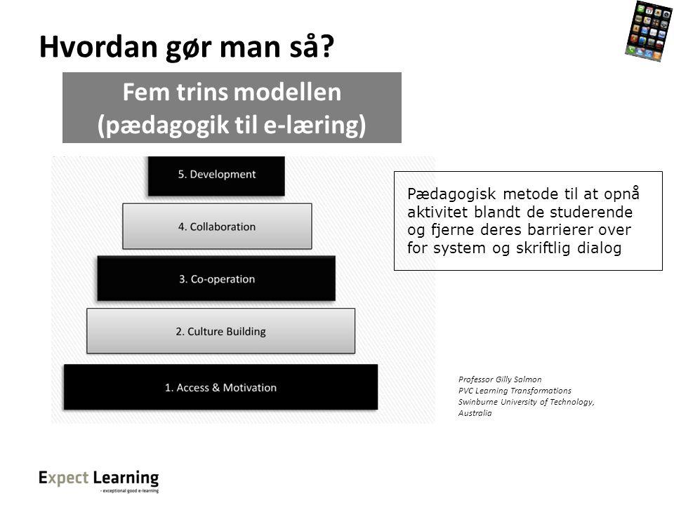 Fem trins modellen (pædagogik til e-læring)
