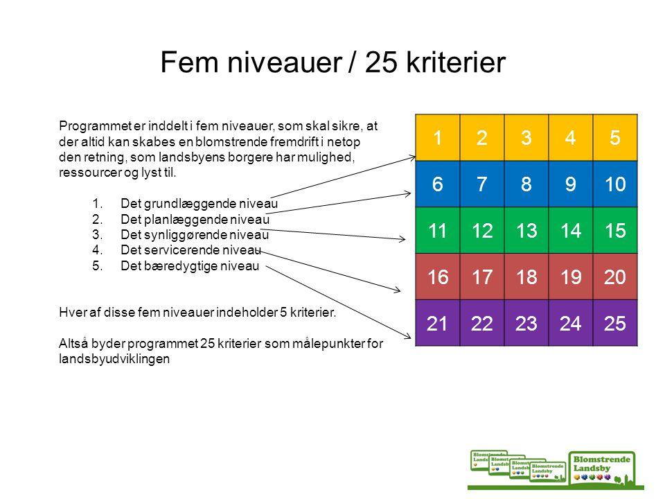 Fem niveauer / 25 kriterier