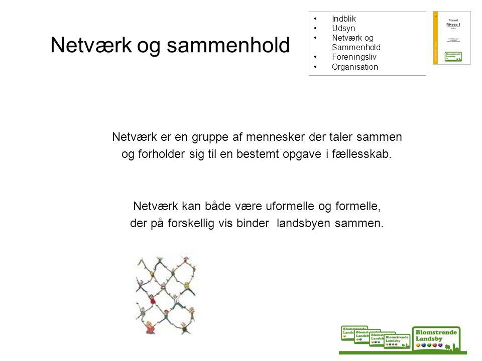 Indblik Udsyn. Netværk og Sammenhold. Foreningsliv. Organisation. Netværk og sammenhold.