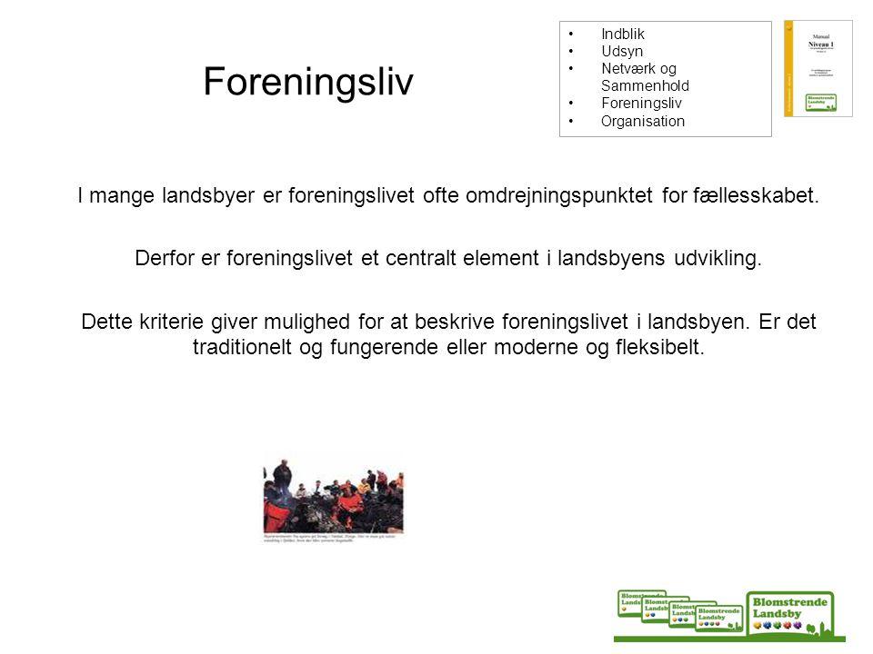 Indblik Udsyn. Netværk og Sammenhold. Foreningsliv. Organisation. Foreningsliv.