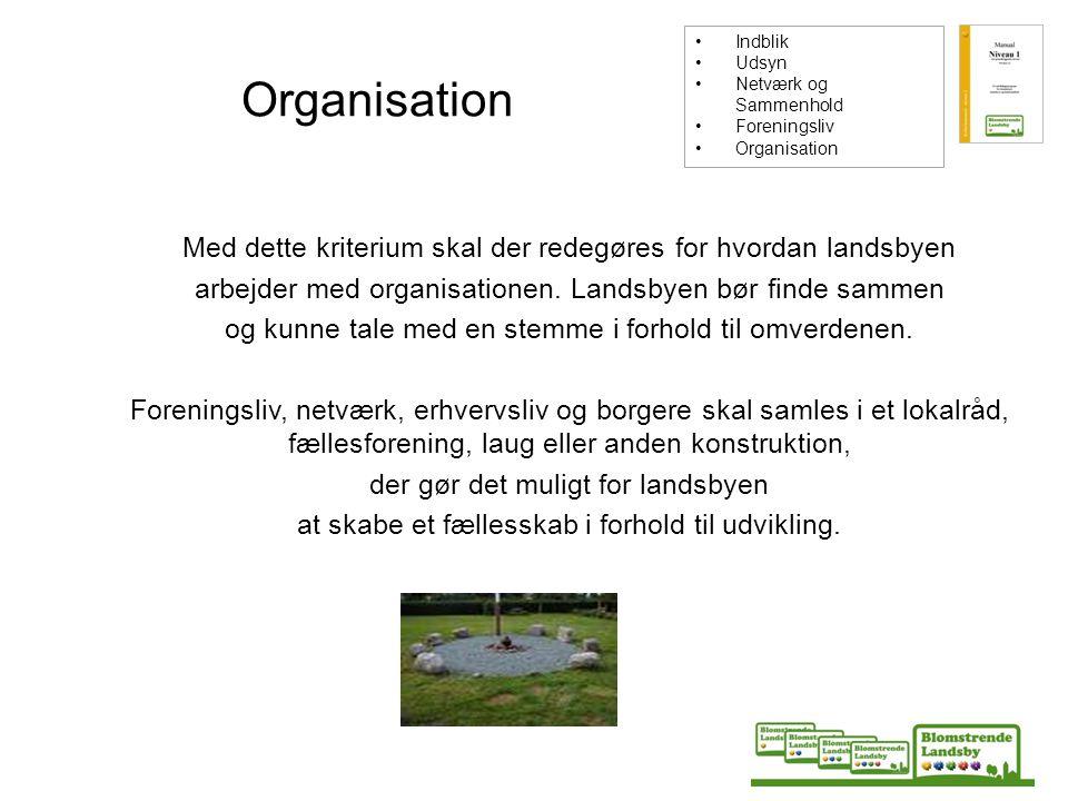 Indblik Udsyn. Netværk og Sammenhold. Foreningsliv. Organisation. Organisation.