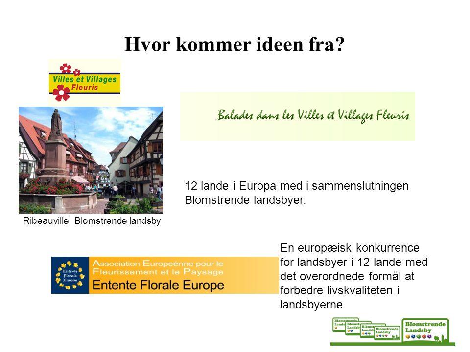 Hvor kommer ideen fra 12 lande i Europa med i sammenslutningen Blomstrende landsbyer. Ribeauville' Blomstrende landsby.