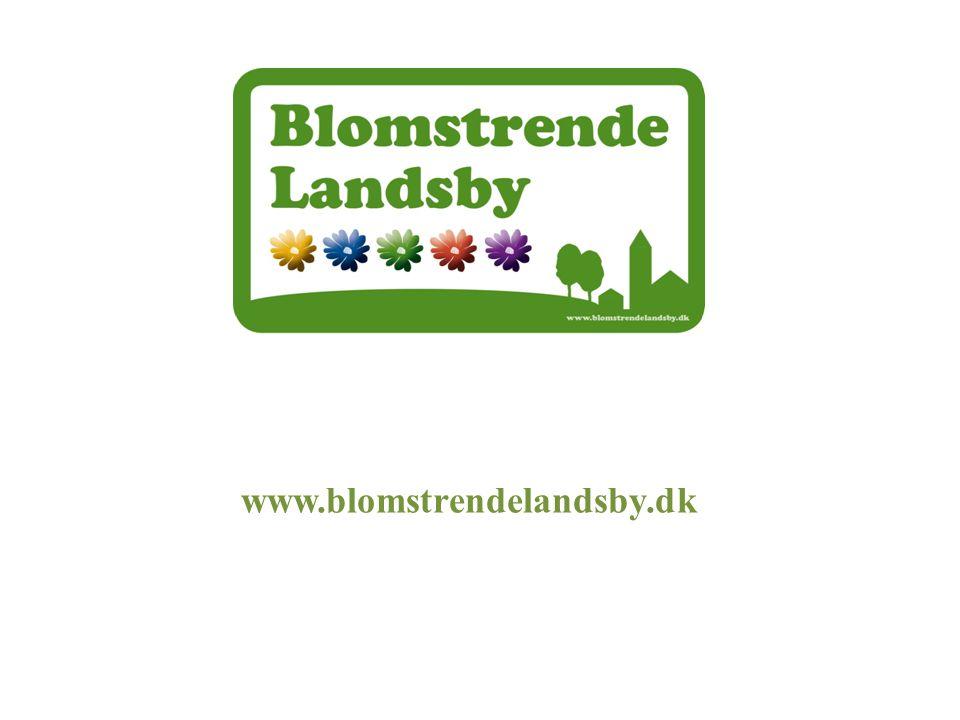 www.blomstrendelandsby.dk