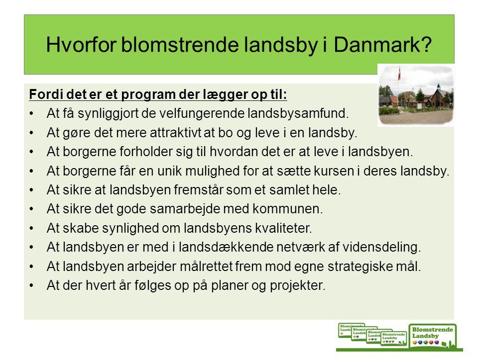 Hvorfor blomstrende landsby i Danmark