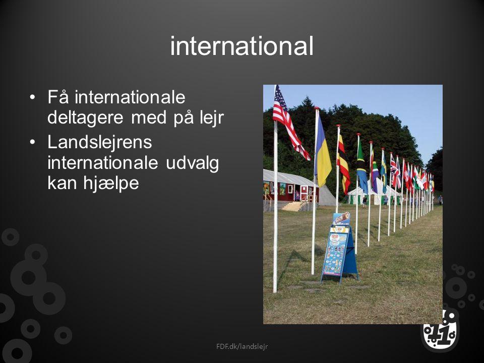 international Få internationale deltagere med på lejr