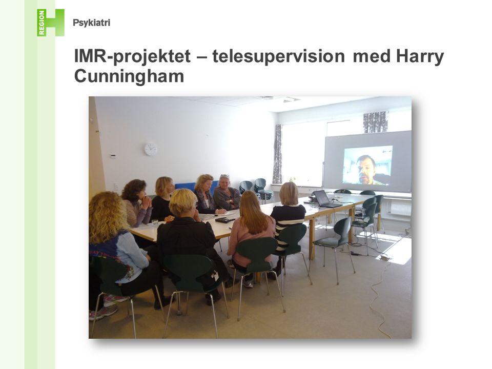 IMR-projektet – telesupervision med Harry Cunningham