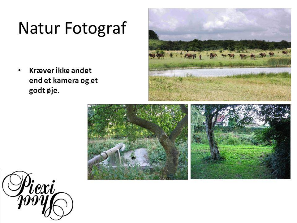 Natur Fotograf Kræver ikke andet end et kamera og et godt øje.