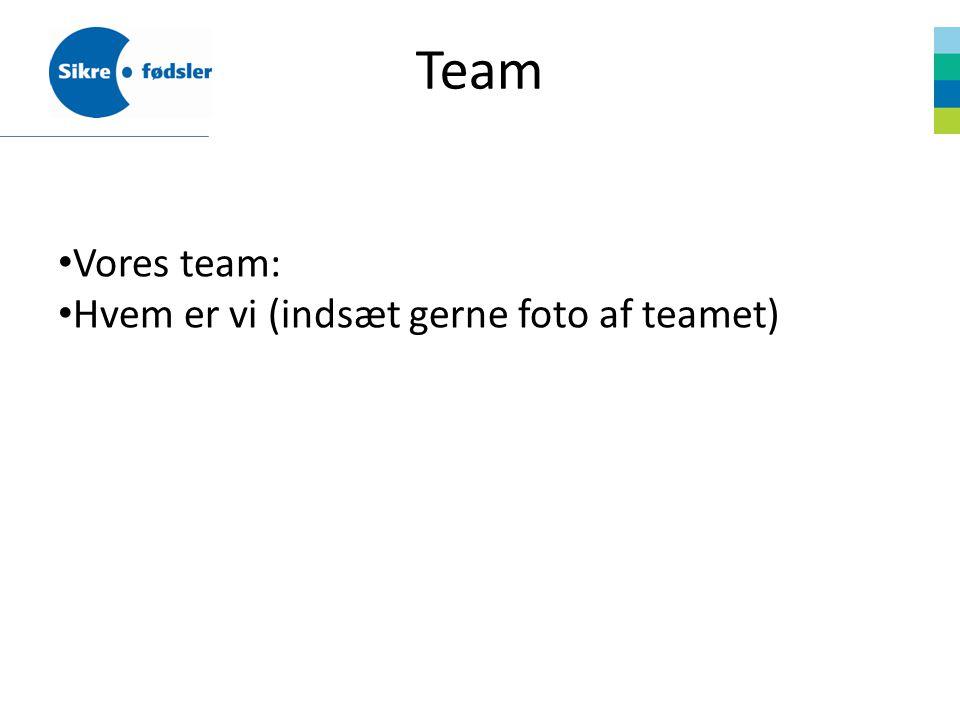 Team Vores team: Hvem er vi (indsæt gerne foto af teamet)