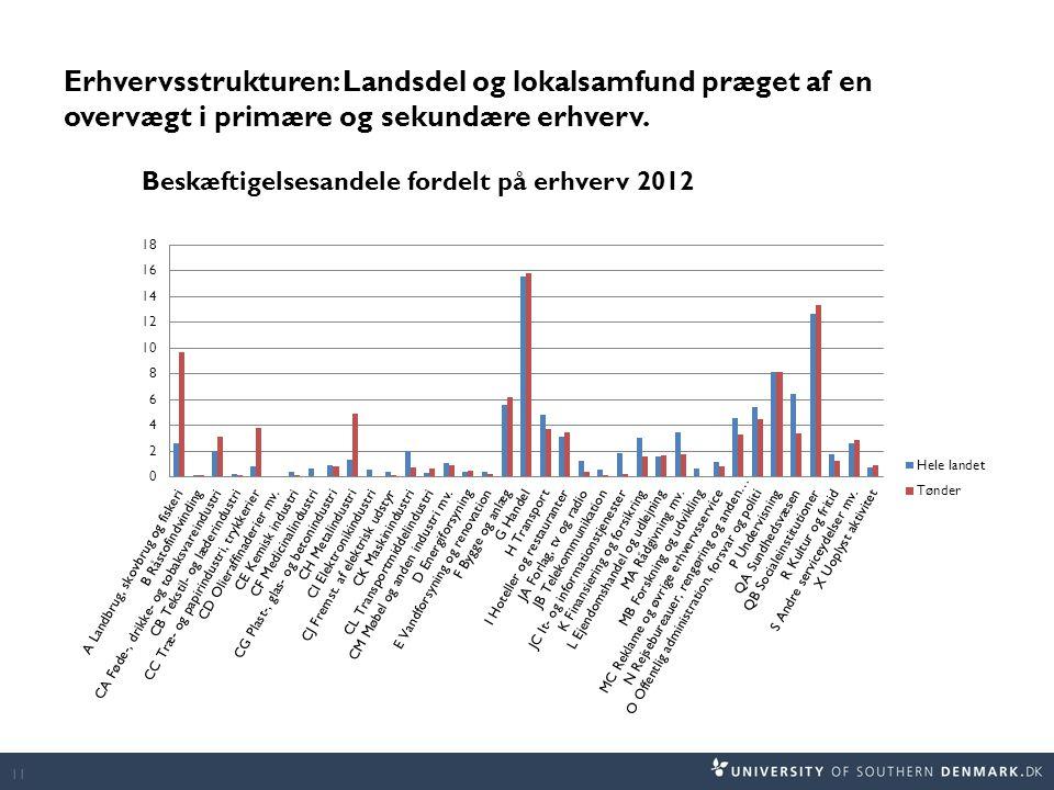 Erhvervsstrukturen: Landsdel og lokalsamfund præget af en overvægt i primære og sekundære erhverv.