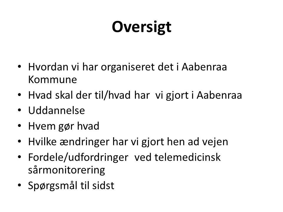 Oversigt Hvordan vi har organiseret det i Aabenraa Kommune