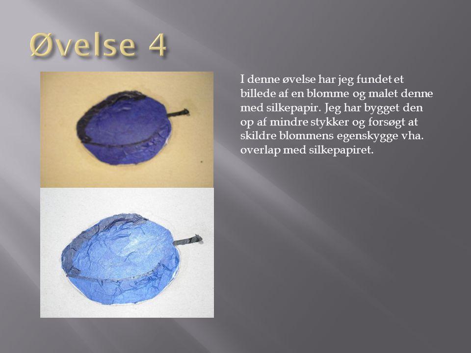 Øvelse 4