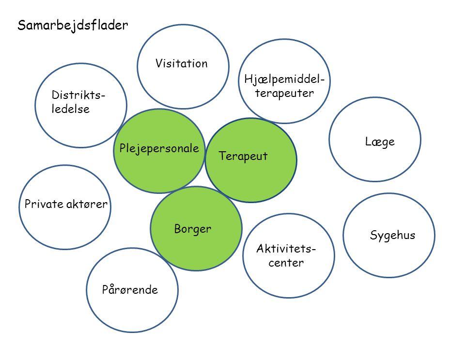 Samarbejdsflader Visitation Hjælpemiddel- terapeuter Distrikts-
