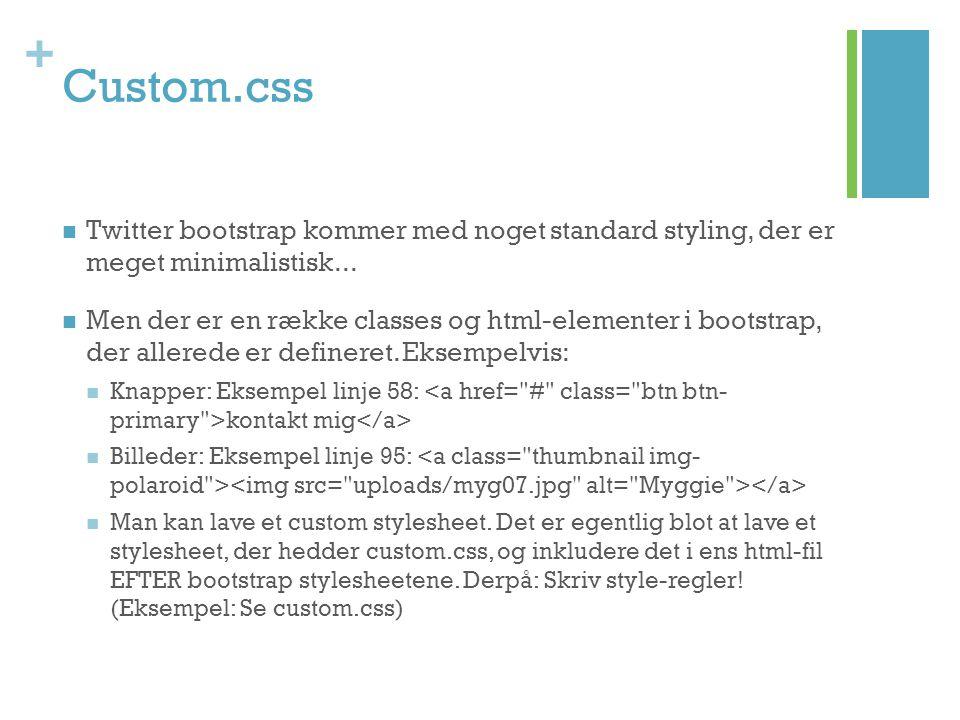 Custom.css Twitter bootstrap kommer med noget standard styling, der er meget minimalistisk...