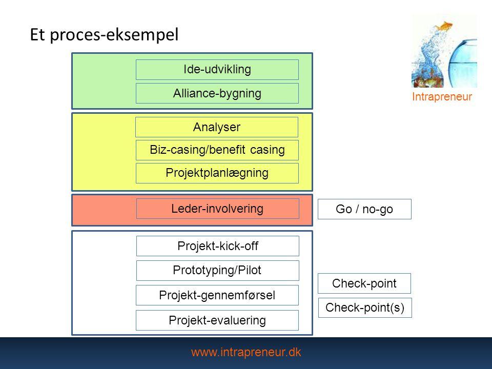 Et proces-eksempel Ide-udvikling Alliance-bygning Analyser