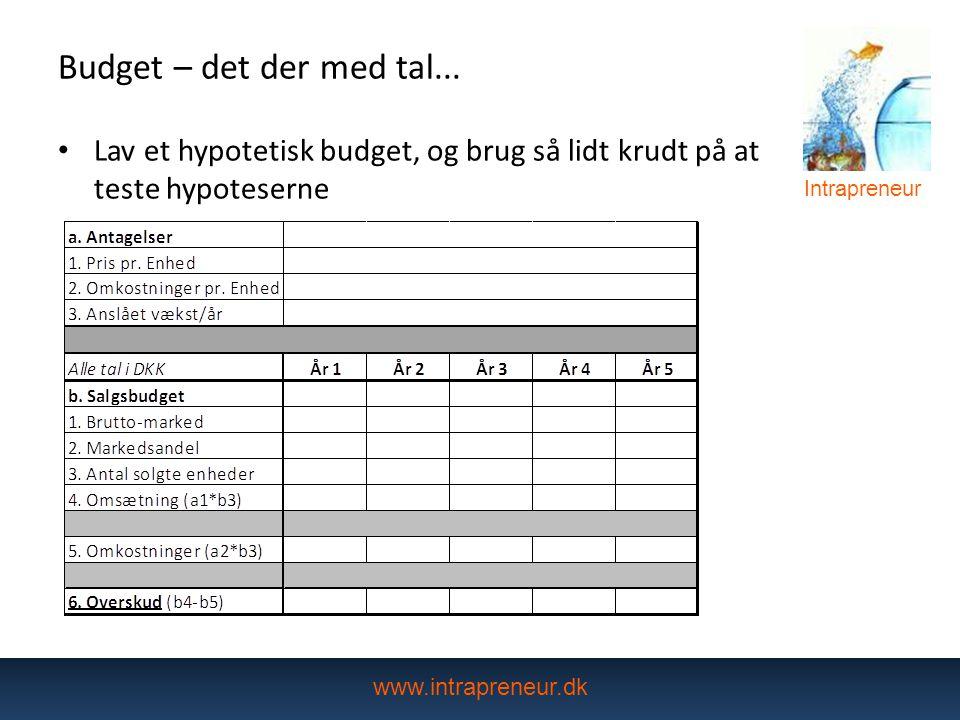Budget – det der med tal... Lav et hypotetisk budget, og brug så lidt krudt på at teste hypoteserne.