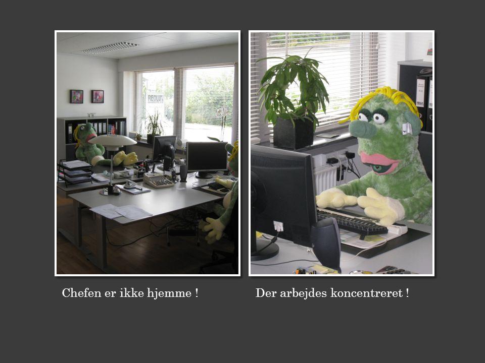 Chefen er ikke hjemme ! Der arbejdes koncentreret !