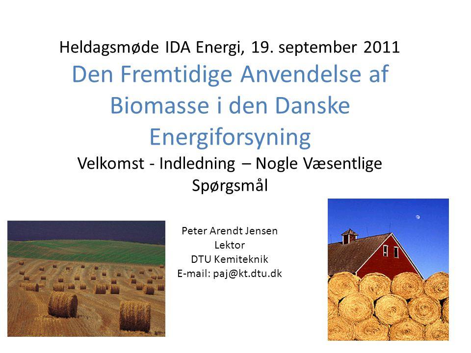 Den Fremtidige Anvendelse af Biomasse i den Danske Energiforsyning
