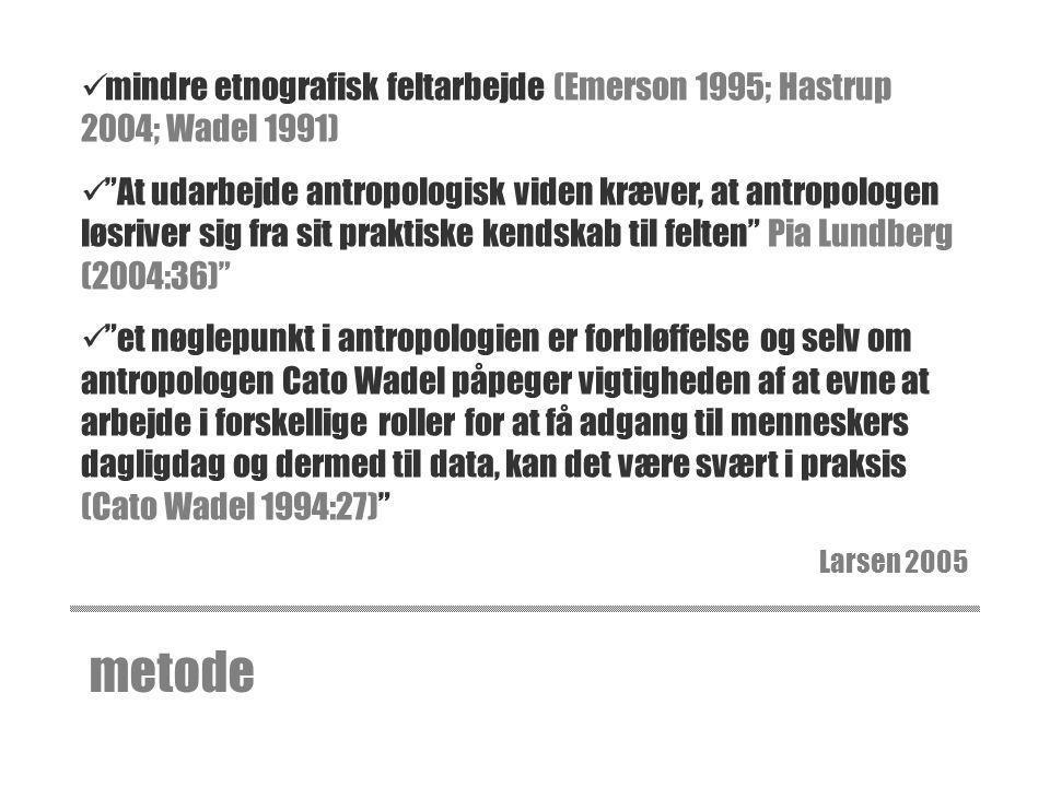 mindre etnografisk feltarbejde (Emerson 1995; Hastrup 2004; Wadel 1991)