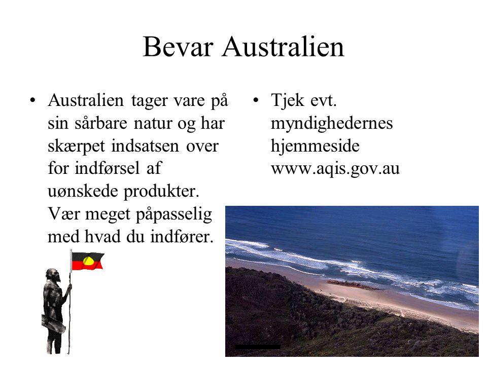 Bevar Australien