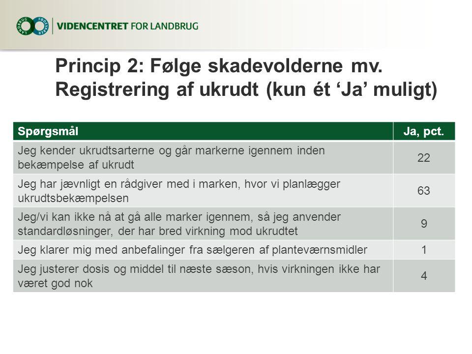 Princip 2: Følge skadevolderne mv