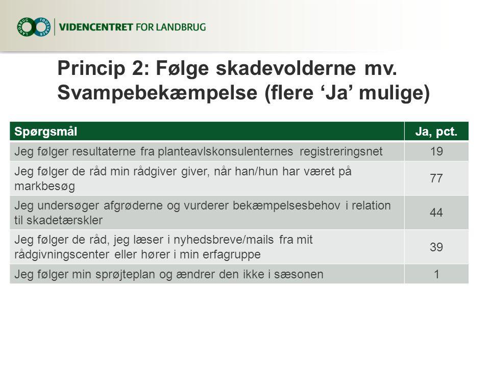 Princip 2: Følge skadevolderne mv. Svampebekæmpelse (flere 'Ja' mulige)