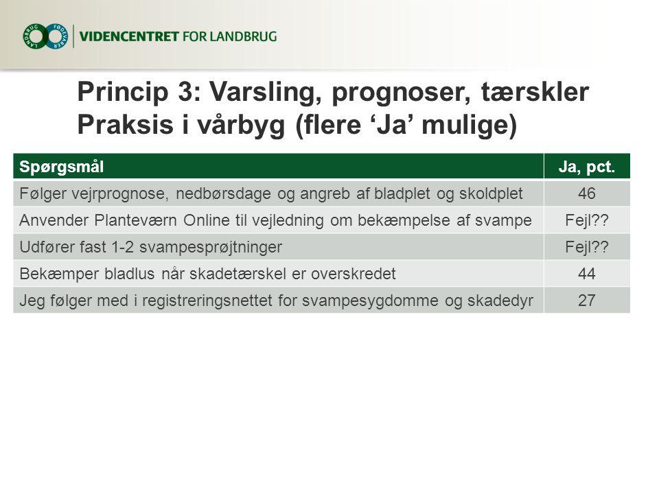 Princip 3: Varsling, prognoser, tærskler Praksis i vårbyg (flere 'Ja' mulige)