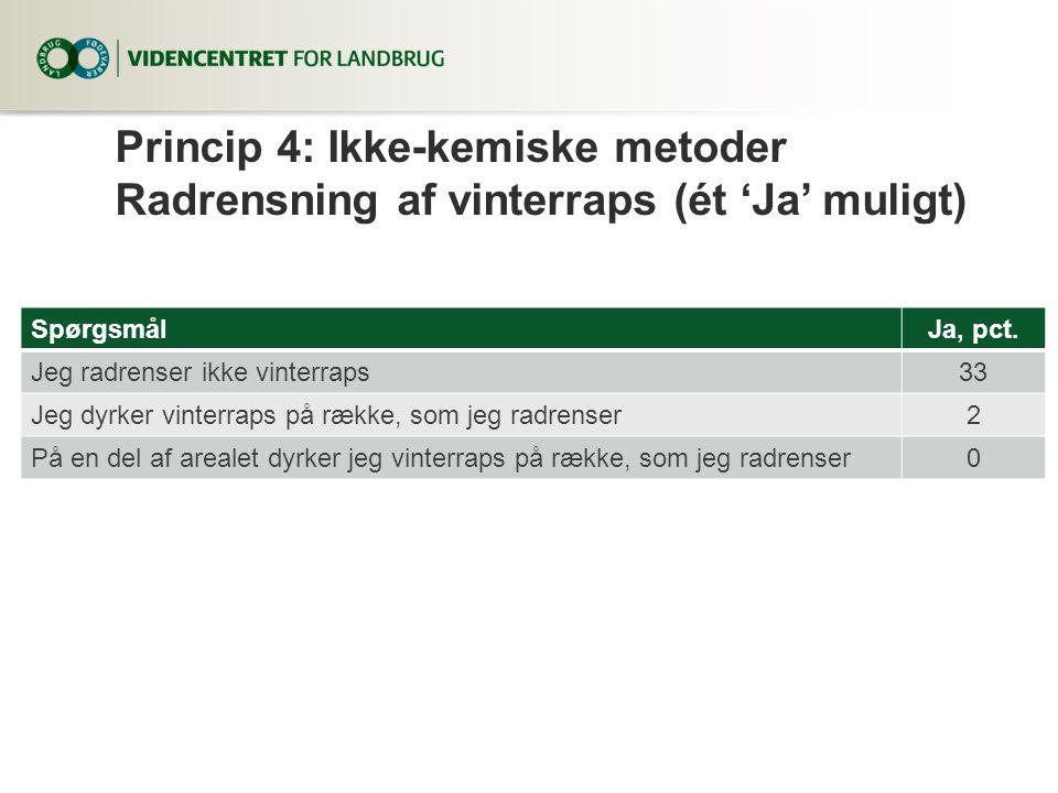 Princip 4: Ikke-kemiske metoder Radrensning af vinterraps (ét 'Ja' muligt)