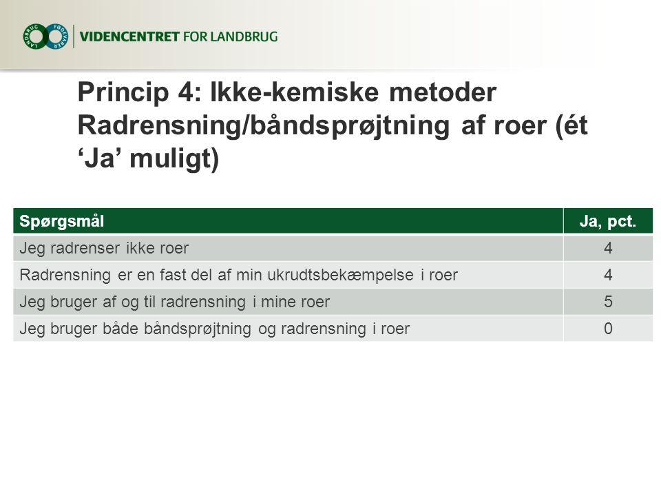 Princip 4: Ikke-kemiske metoder Radrensning/båndsprøjtning af roer (ét 'Ja' muligt)