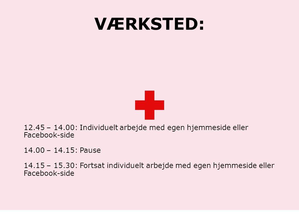 Værksted: 12.45 – 14.00: Individuelt arbejde med egen hjemmeside eller Facebook-side. 14.00 – 14.15: Pause.