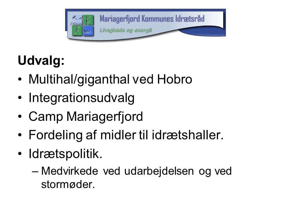 Multihal/giganthal ved Hobro Integrationsudvalg Camp Mariagerfjord