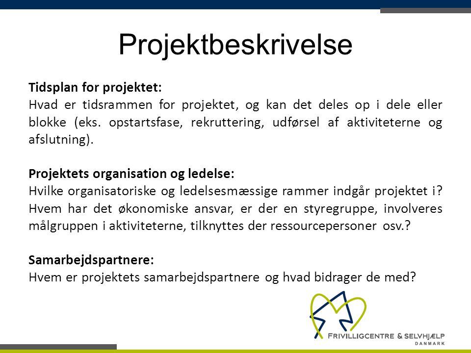 Projektbeskrivelse Tidsplan for projektet: