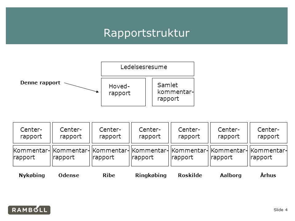 Rapportstruktur Ledelsesresume Hoved- rapport Samlet kommentar-