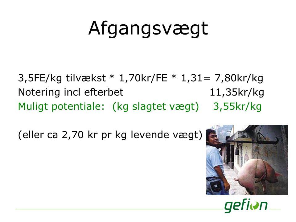 Afgangsvægt 3,5FE/kg tilvækst * 1,70kr/FE * 1,31= 7,80kr/kg