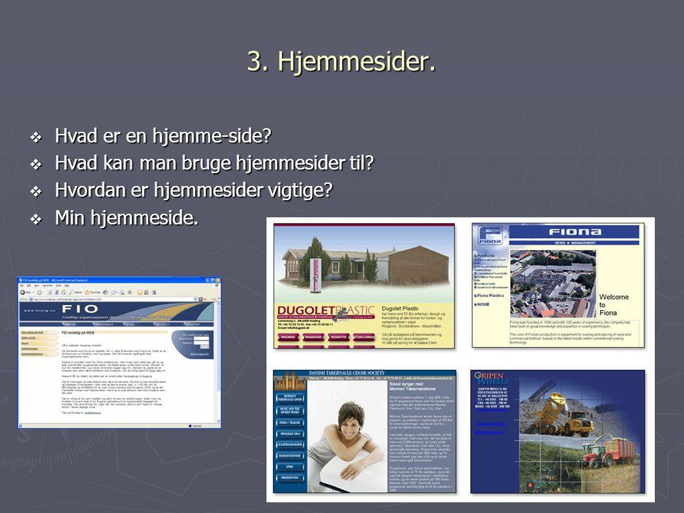 3. Hjemmesider. Hvad er en hjemme-side
