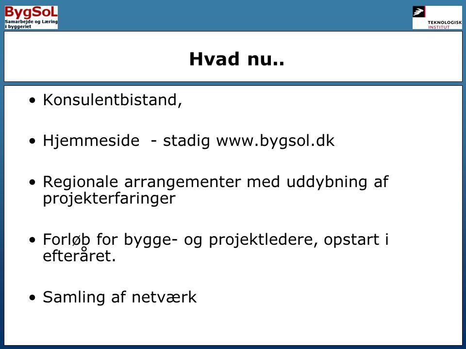 Hvad nu.. Konsulentbistand, Hjemmeside - stadig www.bygsol.dk