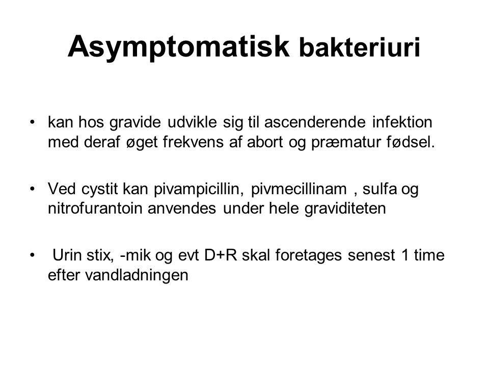 Asymptomatisk bakteriuri