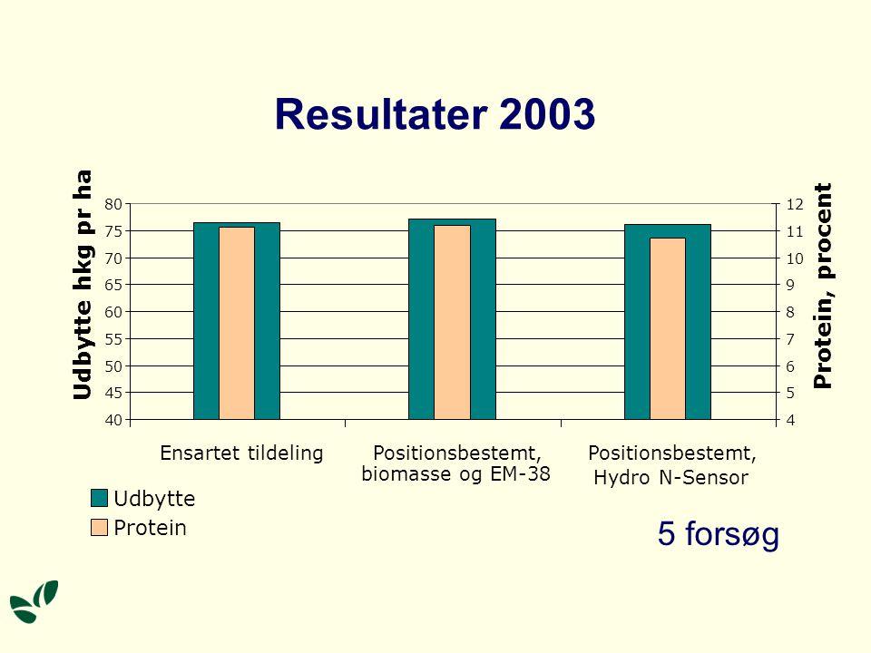 Resultater 2003 5 forsøg Udbytte hkg pr ha Protein, procent Udbytte