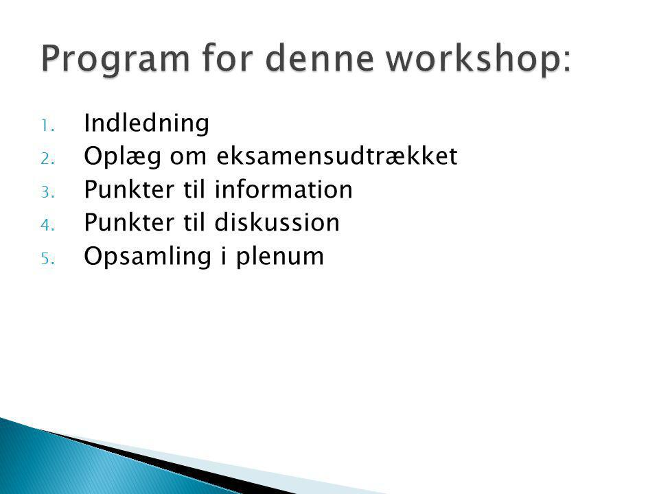 Program for denne workshop: