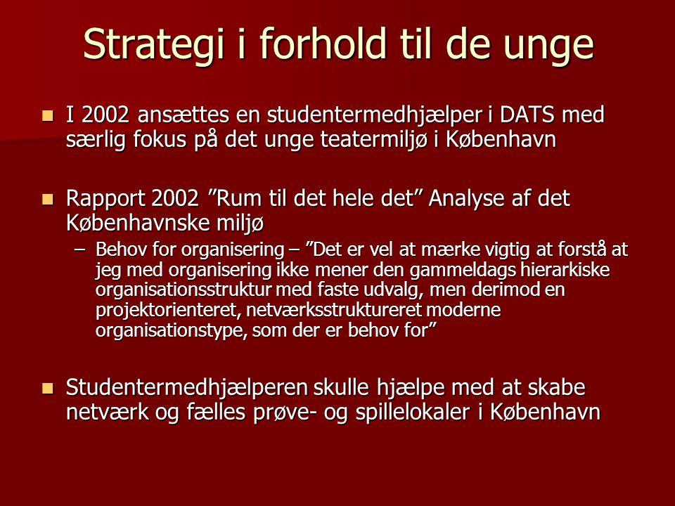 Strategi i forhold til de unge
