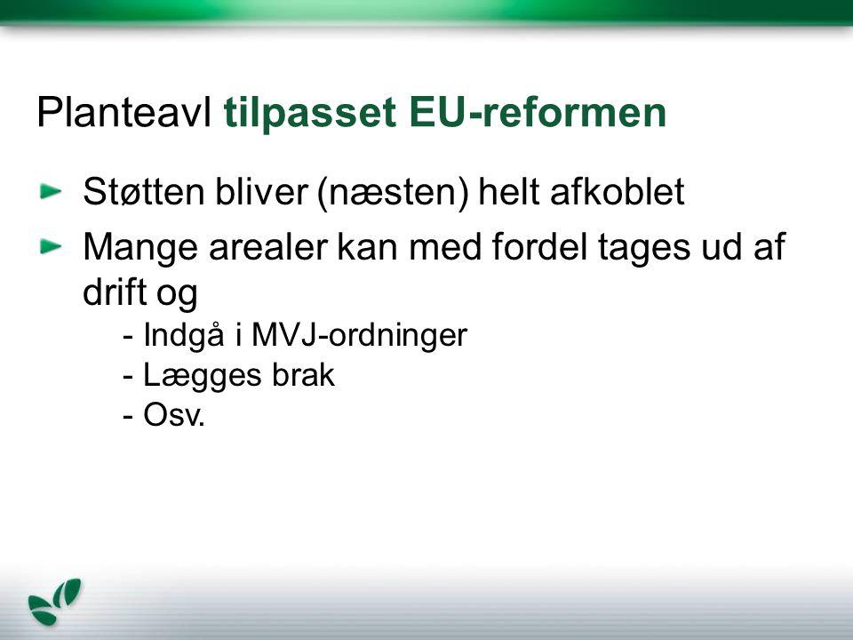 Planteavl tilpasset EU-reformen
