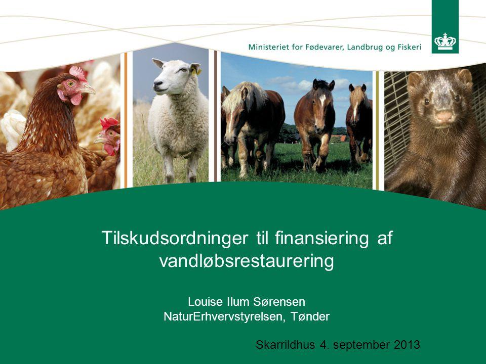 Tilskudsordninger til finansiering af vandløbsrestaurering Louise Ilum Sørensen NaturErhvervstyrelsen, Tønder