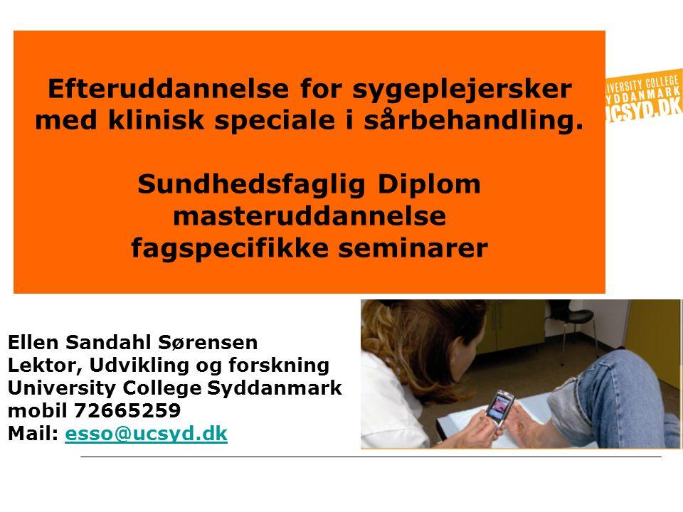 Ellen Sandahl Sørensen Lektor, Udvikling og forskning