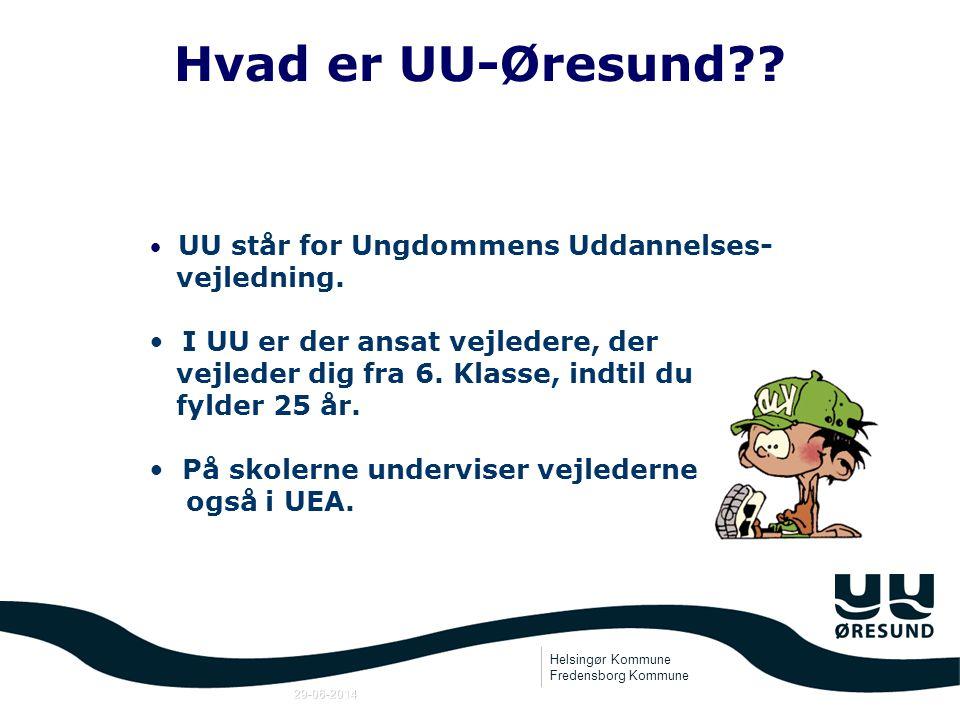 Hvad er UU-Øresund vejledning.
